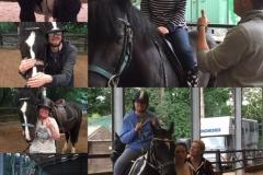 Nothing like a bit of horsefun.