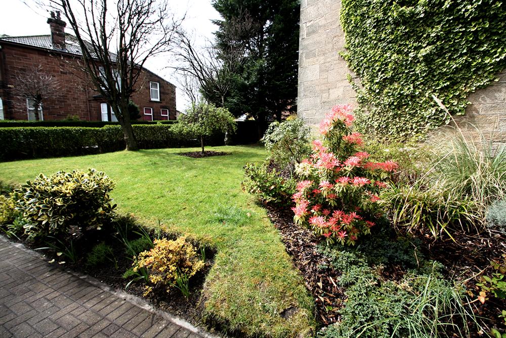 Tollcross front garden.